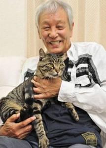 近藤正臣の飼い猫一虎kizuna
